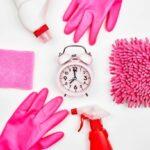 Čišćenje stanova i održavanje okućnice kuća